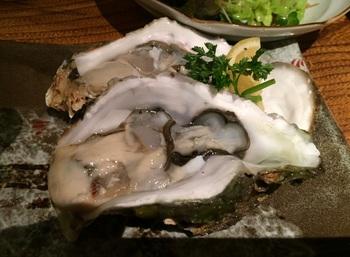 Oyster2B.jpg
