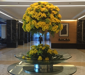Taj Club House,Chennaiの花①B.jpg